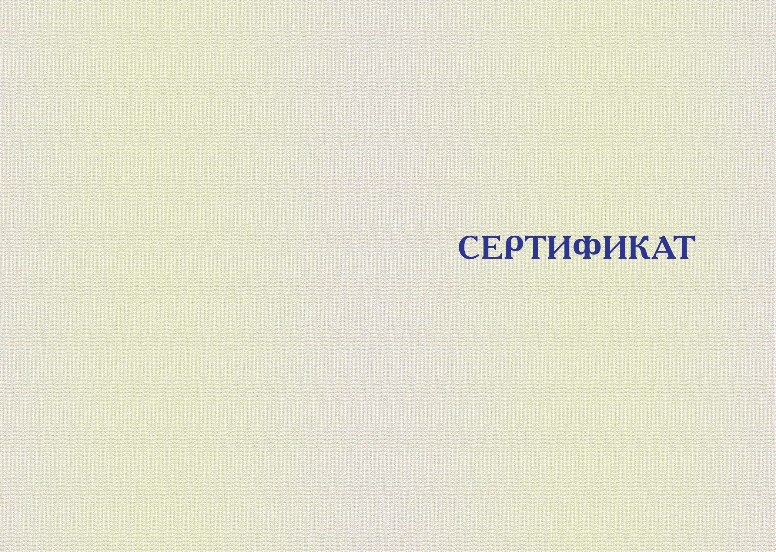 Сертификат ВШЭП Оборотная сторона